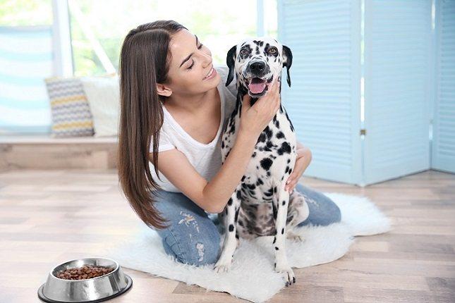 Los animales viven la vida con lealtad