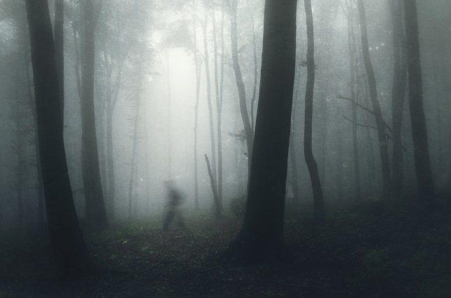La parapsicología es una rama de la ciencia que intenta documentar y estudiar los sucesos de la actividad paranormal