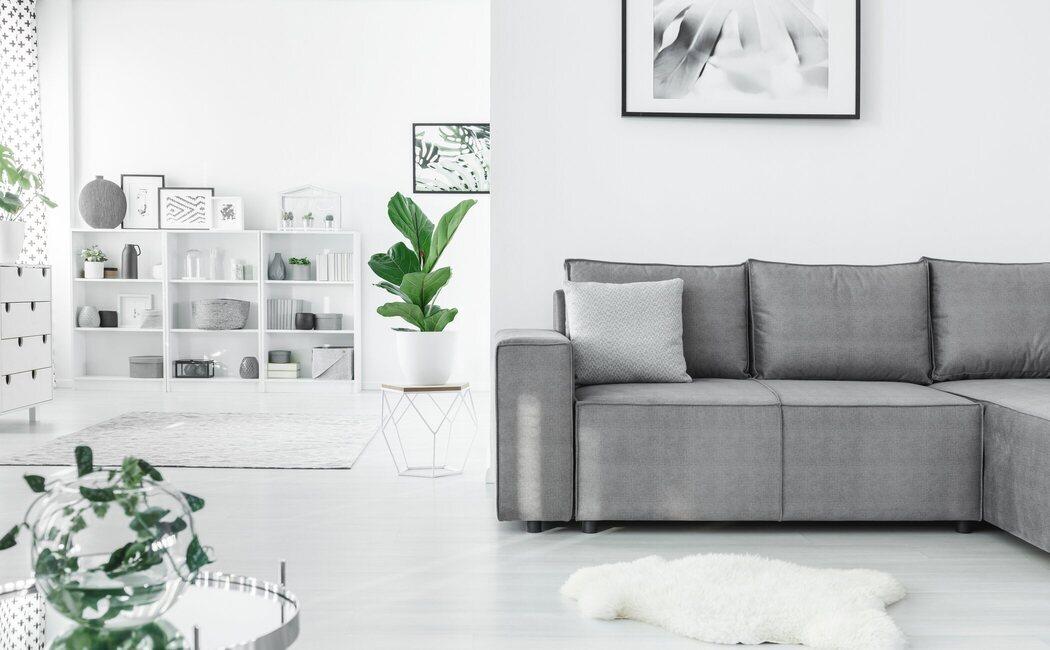 Relación entre una casa limpia y ordenada y nuestra salud mental