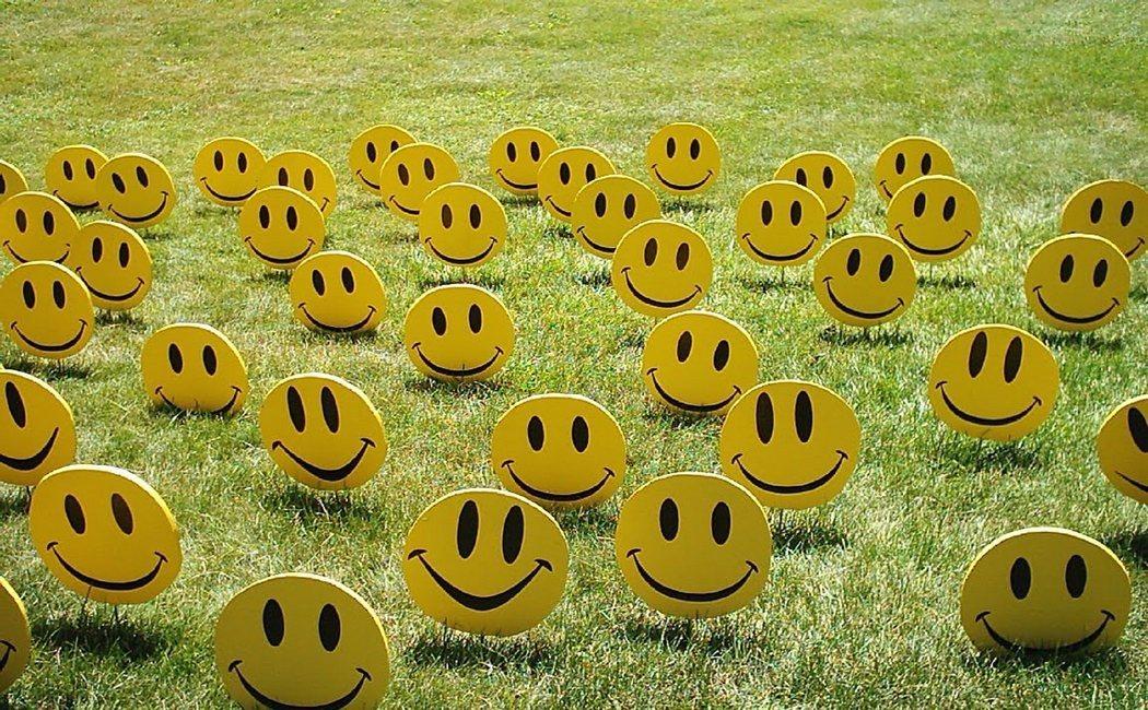 Los 15 pilares de tu felicidad