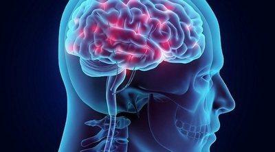 Cómo conseguir tener buenos hábitos gracias a la neurociencia