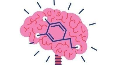 Jonathan Benito, la neurociencia y la salud mental: Cómo cambiar nuestros hábitos puede modelar nuestro cerebro