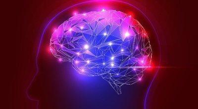 La amígdala, el centro cerebral de las emociones